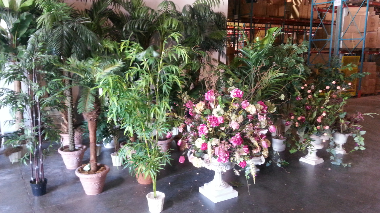 Plants, Trees, Flowers, and lots of other stuff . . . Call InYourOffice @214 682-0592